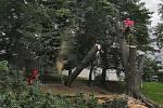 V zámeckém parku v Blansku museli pokácet letitou lípu.