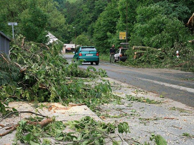 Popadané stromy po bouři komplikovaly provoz v Lažánkách.