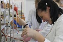 V učebnách, laboratořích a kuchyni studenti pracovali na projektu Mléko je zdravé a ještě nestonalo