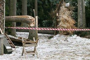 Hasiči a policisté evakuovali v neděli chatovou oblast v lese mezi obcemi Velenov a Suchý. Kvůli vichřici, která v kolonii pokácela stromy. Zákaz vstup platí do pondělního poledne.