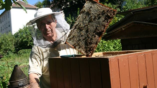 Včelaři na Blanensku si pochvalují výbornou snůšku. Kilogram medu budou v průměru prodávat za sto padesát korun. Na snímcích adamovský včelař Jiří Jelínek.