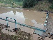 Liják napustil bazén uzavřeného koupaliště v Černé Hoře.