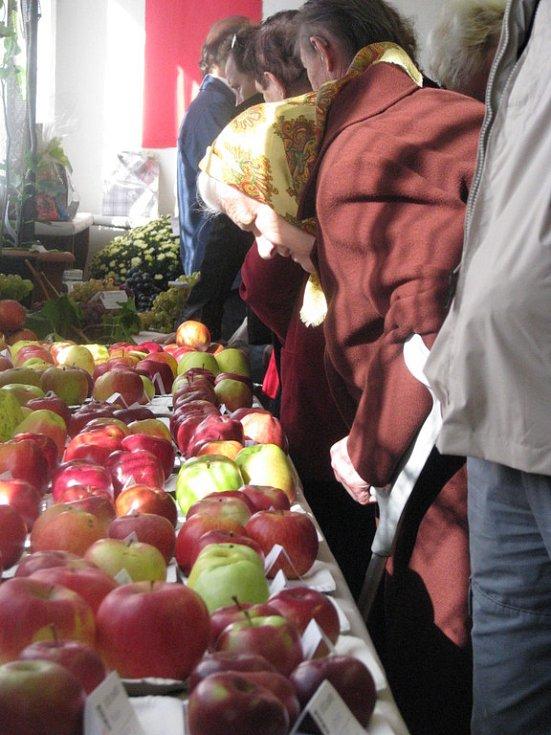 Výstava ovpce a zeleniny v Kozojídkách