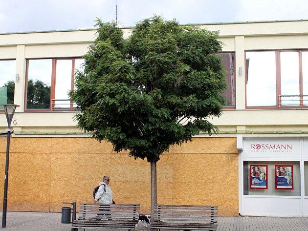 Akáty z Wanklova náměstí v Blansku už brzo zmizí.
