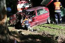 Třicetiletý muž narazil u Žďáru do stromu. Těžkým zraněním podlehl.