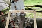 U Staré huti nedaleko Adamova začal několikadenní workshop Historické a prehistorické tavby železa a jeho zpracování.