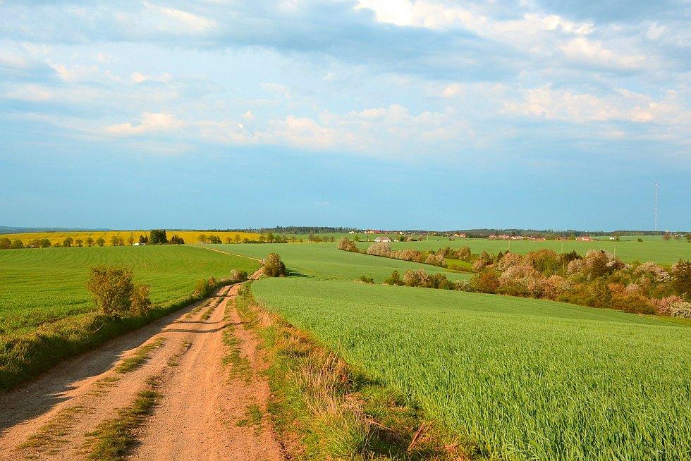 Jarní příroda (pohled ke Krasové).