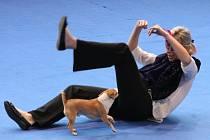 Ve sportovní hale ASK Blansko se konalo mistrovství republiky v tanci se psem.