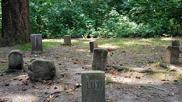 Psí hřbitov v Kunštátě.