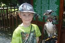 Čtvrťák Matyáš Dyčka ze Sebranic s sebou nosí nejčastěji dalekohled a notes se zápisky. Jeho výpravy za dobrodružstvím totiž míří do přírody. Pozoruje ptáky a svými poznatky přispívá na ornitologický web, který navštěvují amatérští i profesionální pozorov