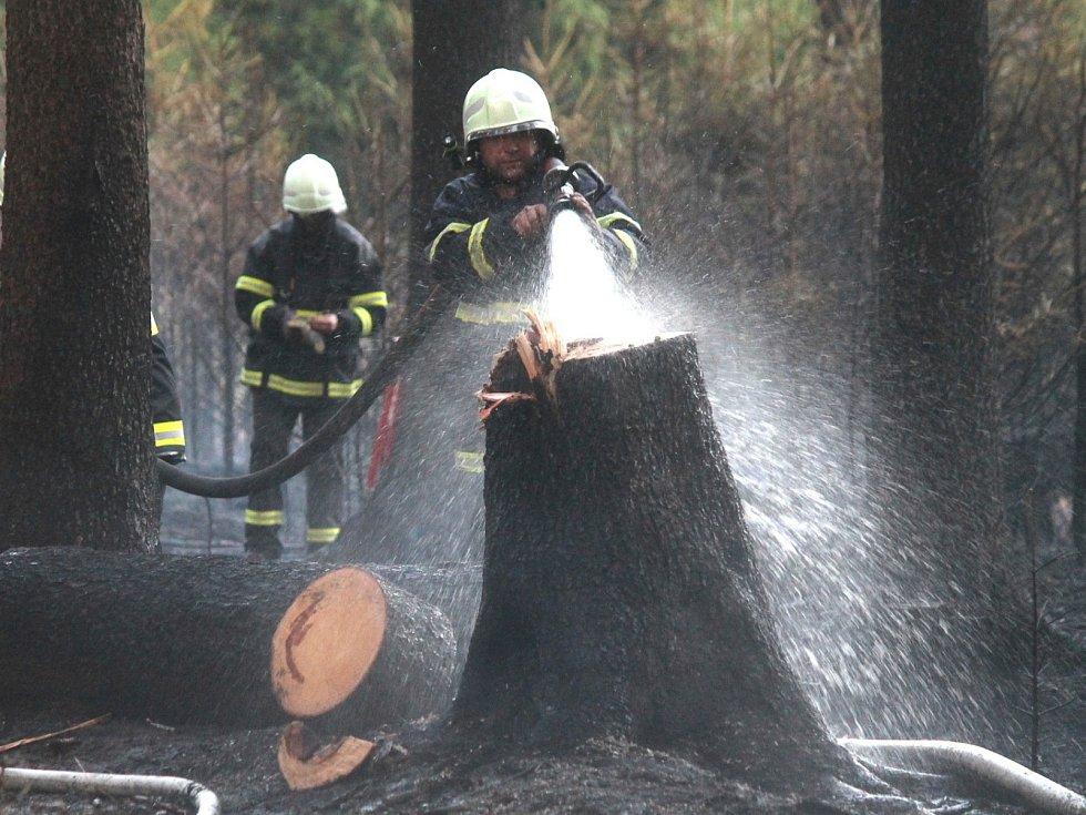 Deset jednotek hasičů zalarmoval v sobotu po šesté večer požár lesa. Hořelo mezi Ostrovem u Macochy, Lipovcem a Krasovou. Krátce před osmou hodinou dostali hasiči oheň po kontrolu.