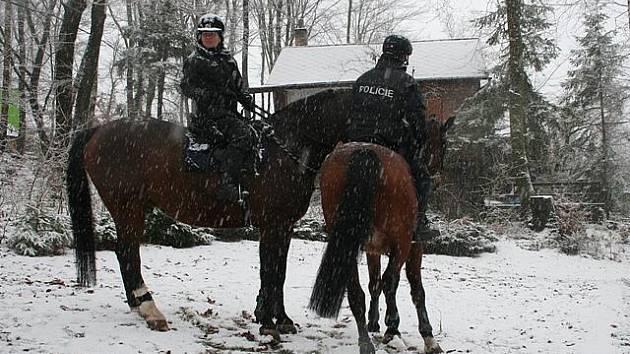 Policisté si při prohledávání chat vzali na pomoc koně.