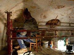 Na zámku v Lysicích přes zimu ošetřili parkety proti dřevomorce a restaurovali výmalbu sala terreny. V Rájci nad Svitavou zase opravují střechu.