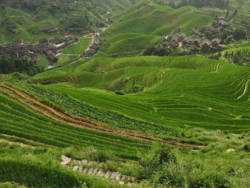 rýžové terasy Dračího hřbetu