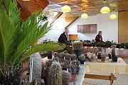 V pátek se v blanenském Domě zahrádkářů konala tradiční jarní výstava.