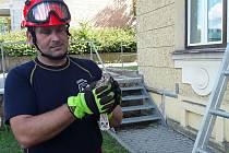 Mládě hasiči vrátili do hnízda pomocí žebříku.
