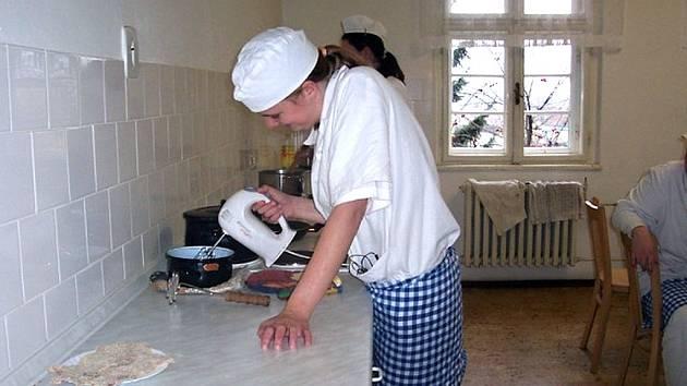 Letos otevřelo vedení školy jen čtyři obory tříletých vzdělávacích programů. Opravářské práce, Potravinářskou výrobu zaměřenou na cukrářské práce, obor Stravovací a ubytovací služby zaměřený na kuchařské práce.