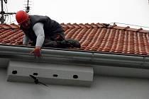 Zachránce za rorýsem v Rousínově vylezl až na střechu.