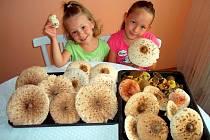 Úspěšní byli v lese také Kovaříkovi ze Senetářova na Blanensku. S dcerami Lindou a Barunkou našli koš plný bedel, hřibů a babek.