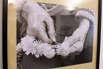 Městská správa sociálních služeb Boskovice připravila výstavu nazvanou Příběhy rukou.