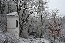Ze zimní vycházky na znojemské Hradiště. Foto: Veronika Králová, domavpodyji.cz