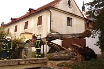 U lysického zámku padla stará lípa. Opřela se o zeď.