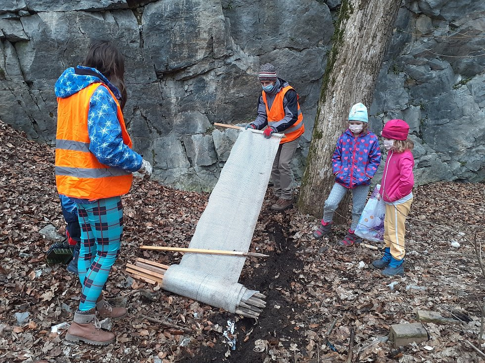V neděli rozmístili dobrovolníci u silnice v Josefovském údolí na Blanensku zábrany z fólie. Usměrní tah obojživelníků.