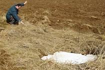 Vzniklo nové vyhlášení Chráněné krajinné oblasti Moravský kras. Změny se nejvíc dotknou zemědělců. Přibude míst, která budou muset kvůli objeveným jeskyním zatravnit.