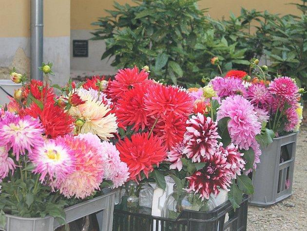Turisté, kteří zamíří na zámek v Lysicích, si v tamních komnatách prohlédnou pestrá květinová aranžmá.
