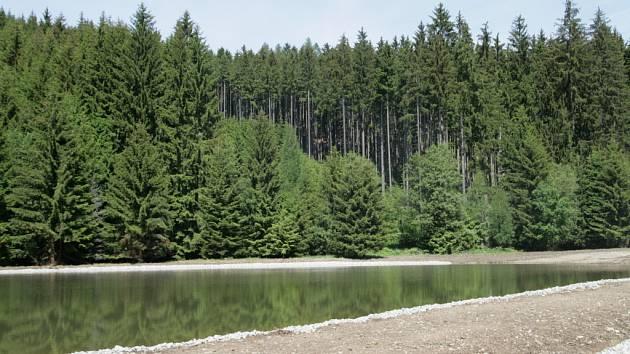Sloupským údolím Na Lukách povede místo polňačky zpevněná cesta. Vedle ní vyhloubili dělníci na kraji lesa malou vodní nádrž.