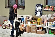 V Boskovicích ve středu odstartovala vánoční sbírka pro záchytnou stanici pro zvířata.