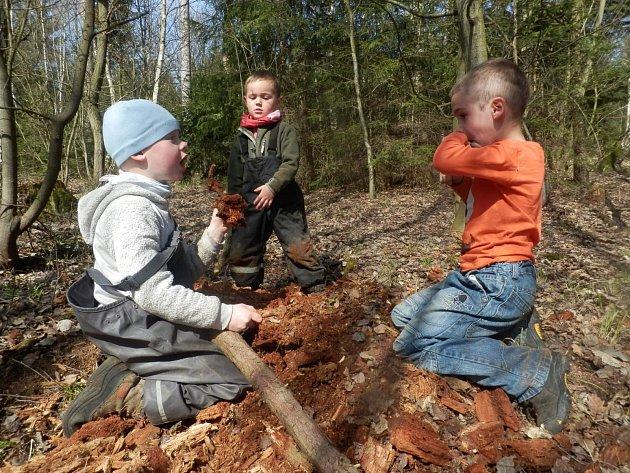 Boskovický Jinánek se hlásí k myšlenkám lesních školek. Je ale schopen dostát i liteře nyní přijatého zákona, a o svou budoucnost se tak nebojí.