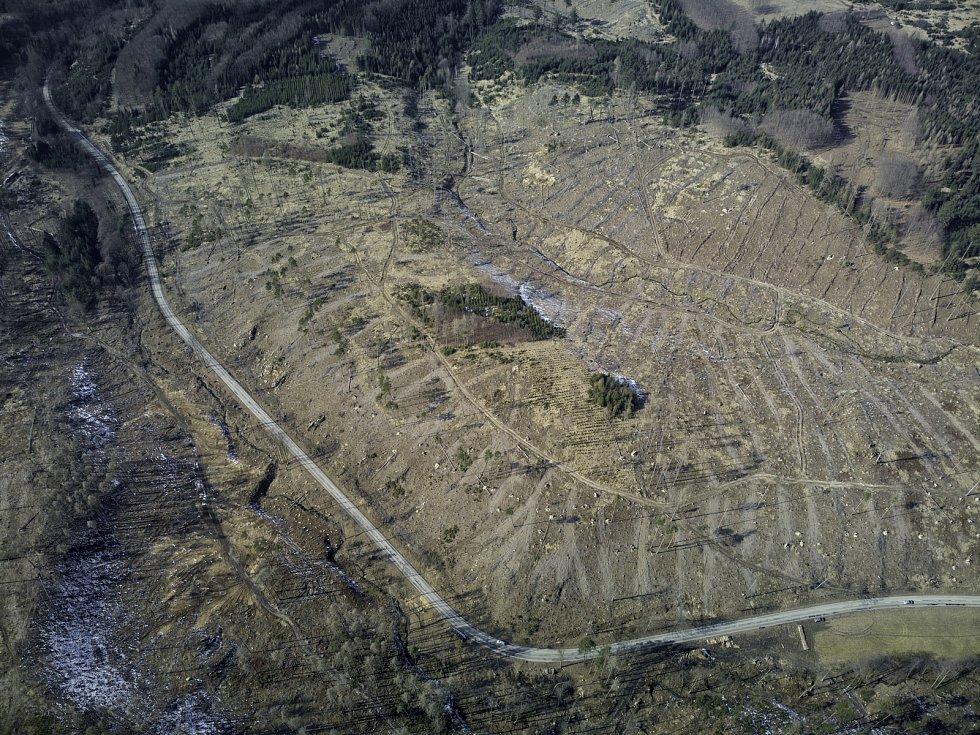 Kůrovcová kalamita na Blanensku z ptačí perspektivy. Na snímku okolí obce Žďár.