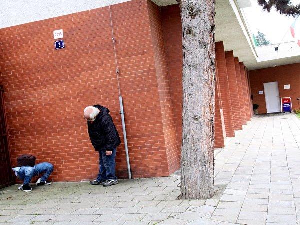 Neznámý umělec FIA umístil vBlansku vsobotu ráno před vchod tamní galerie plastiku kálející postavy. Zkapsy riflí jí čouhala volební obálka.