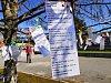 Týden ve fotografii: Jaro na Blanensku vítali i trháním básní ze stromu