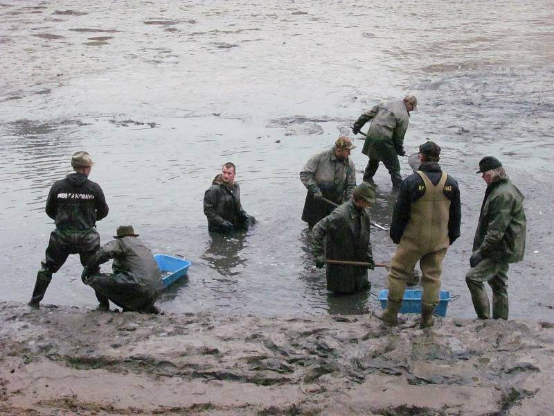 Jedenáct let po nákladném odbahnění a úpravách břehů byla blanenská přehrada Palava v sobotu opět bez vody. Kvůli připravované opravě vadného potrubí, které vede skrz hráz. Brzy ráno začali rybáři s výlovem.