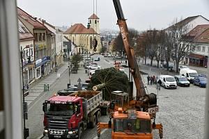 Vánoční strom rozsvítí v Boskovicích on-line. Tuto neděli.