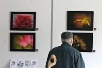 Fotograf Petr Stříbrcký vystavuje v blanenské galerii Jonáš. Makrosnímky z přírody v okolí Blanska.