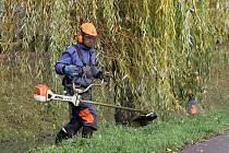 Pracovníci Povodí Moravy se v těchto dnech pustili na Blanensku do pravidelné údržby břehů v okolí řeky Svitavy.