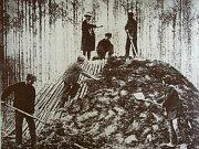 Historické i současné pohledy na textilku ve Svitáce.