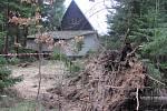 Popadané stromy zůstanou v chatové osadě v obci Suchý ještě dva týdny.