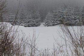 Běžkaři na Blanensku paběrkují. Sníh nestačí