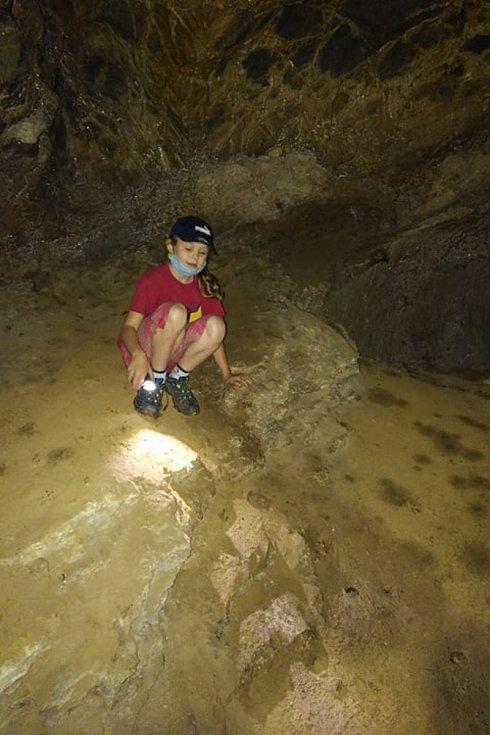 Kamínky a několik zkamenělých mušlí. Svoji domácí výstavku pokladů na poličce rozšířila sedmiletá Aneta Látalová z Brna o daleko cennější nález. O část stoličky jeskynního medvěda starou několik desítek tisíc let.