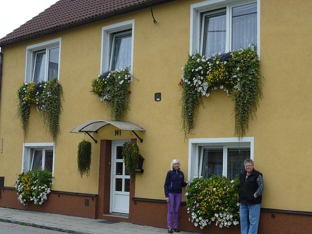 Dům Hany Kuštekové z Olešnice zdobí květiny rozmanitých druhů a barev. Žena pravidelně vyhráva soutěže o nejkrásnější květinovou výzdobu.