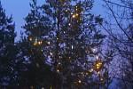 Rozsvícení vánočního stormu v blanenském Senior centru.