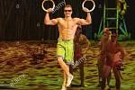 V dětství snil o olympiádě a medaili. V gymnastice však pro něj byl strop republikový titul a účast na kruzích ve finále juniorského ME. Přesto se Vladimír Novotný z Blanska dostal na vrchol. Ve třiceti letech jako artista na kruzích u Cirque du Soleil.