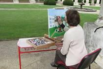 Naivní umělci z několika zemí tvoří v těchto dnech v prostorách zámku v Lysicích.