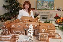 Zahrádkáři z Velkých Opatovic uspořádali o víkendu vánoční výstavu, při které se pochlubili svými vlastními díly. Nejvíc upoutal model tamního zámku celý z perníku.