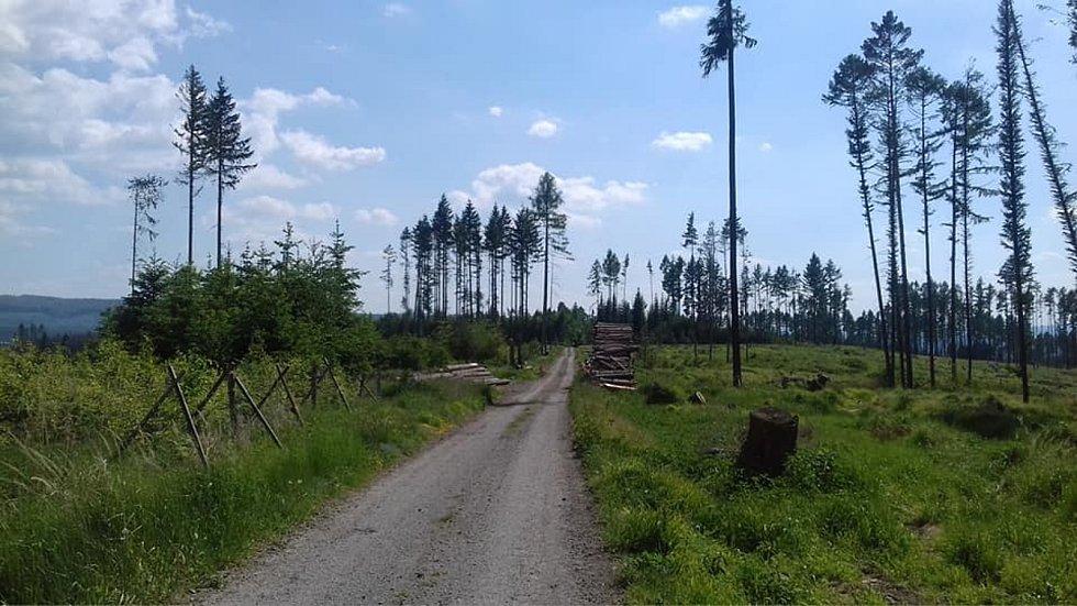 Z výletu z Boskovic do Úsobrna, Jaroměřic, Uhřice, Cetkovic a Světlá do Šebetova a přes Doubravy do Boskovic.