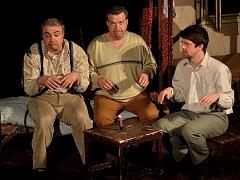 Známí herci se v Letovicích představili v muzikálové adaptaci komedie Světáci.